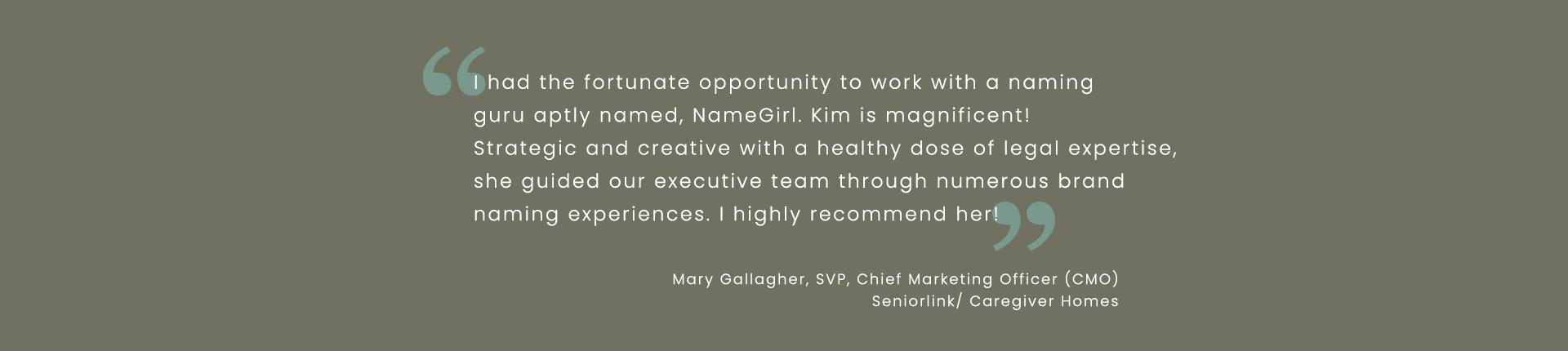 Testimonial Mary Gallagher CMO Vela Care Collaboration Platform SeniorLink